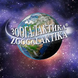 Зоогалактика - портал о животных для детей и взрослых